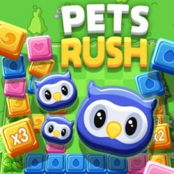 Match 3 cute animals to make it to the next level and beat your own highscore!